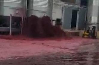 Iz rezervoara u Španiji iscurilo 50.000 litara vina (VIDEO)