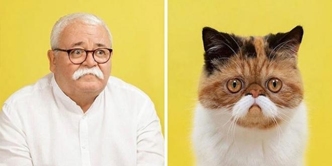 Fotograf je fotografisao mačke i ljude koji izgledaju kao da su dvojnici