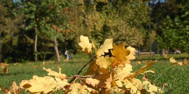 Boje jeseni naziru se u tuzlanskom Gradskom parku